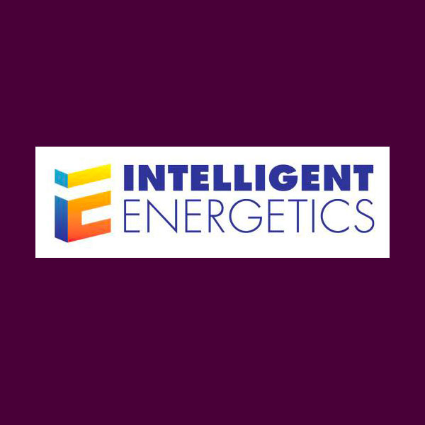 Intelligent Energetics